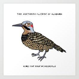 Northern Flicker – State Bird of Alabama Art Print