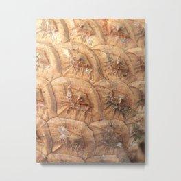 Pine cone pattern Metal Print