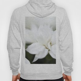 Snow White Flowers on a Dark Background #decor #society6 #buyart Hoody