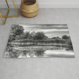 The Lily Pond Rug