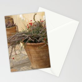 Courtyard Plants Stationery Cards