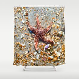 Washed up Beautiful Red Starfish Photo Art Shower Curtain