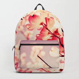 Dialogue With the Sky Backpack
