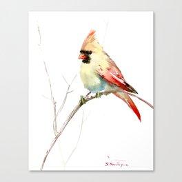 Northern Cardinal (female Cardinal bird) Canvas Print