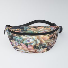 closeup green and pink succulent plant garden background Fanny Pack