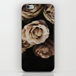 Autumn Roses iPhone Skin
