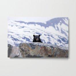 Black Bear Peak-A-Boo Metal Print