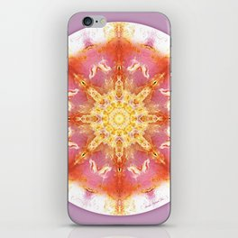 Mandalas for a New Earth 12 iPhone Skin