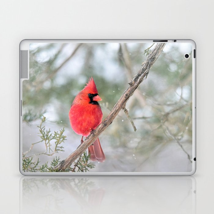 Winter's End Cardinal Laptop & iPad Skin