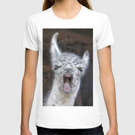 Young Lama with a big mouth | Junges Lama mit grosser Klappe T-shirt