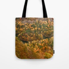 The view On Top of Castle Craig.... Tote Bag