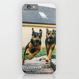 Dogs Have Fun At The Garden iPhone Case