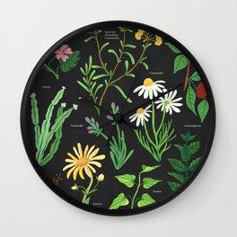 Medicinal Plants Wall Clock