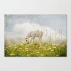 Greener Pastures Canvas Print