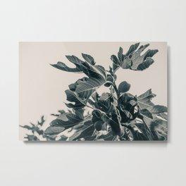 Fig Leaf Tree #society6 #decor #buyart #kirovair Metal Print