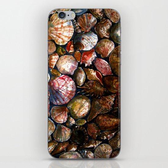 Shell 1 iPhone & iPod Skin