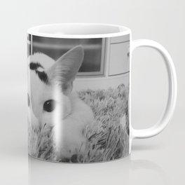 kitty ready to pounce Coffee Mug