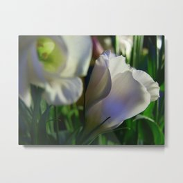Lisianthus single Metal Print