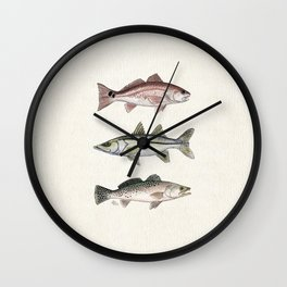 """Inshore Slam!"" by Amber Marine ~ Redfish, Snook, & Trout Watercolor Illustration, (Copyright 2013) Wall Clock"