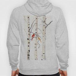 Birch Trees and Cardinal Hoody