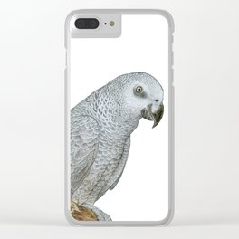 African Grey Parrot Clear iPhone Case