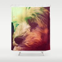 harry Shower Curtains featuring Harry by MeMRB