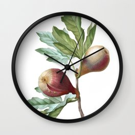 HIGHEST QUALITY botanical poster of Fig Wall Clock