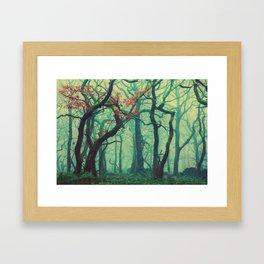 Tall Tree Tales Framed Art Print