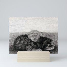 Snuggling Kittens 3 Mini Art Print
