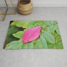 Pink leaf on green leaves Rug