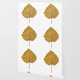 Goldenberry leaf Wallpaper