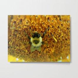 The Pollinator Flipped Metal Print