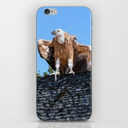 Vulture Perched On Church Roof iPhone Skin