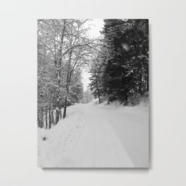 Wintery Road Metal Print