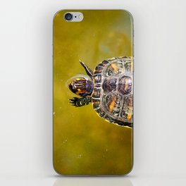 The journey of a baby turtle iPhone Skin