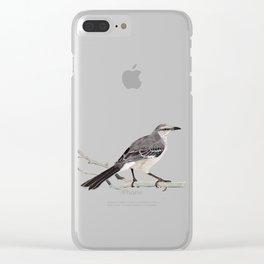 Northern mockingbird - Cenzontle - Mimus polyglottos Clear iPhone Case