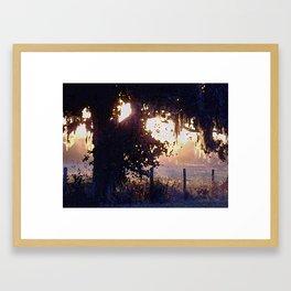 Overgrown Pasture Sunset Framed Art Print