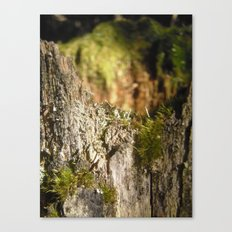 Fairy Castle Canvas Print