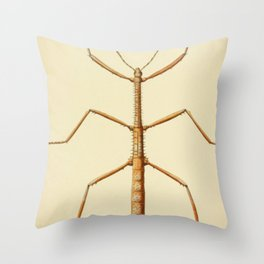 Antique Stick Insect Throw Pillow