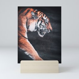 Tiger Mini Art Print