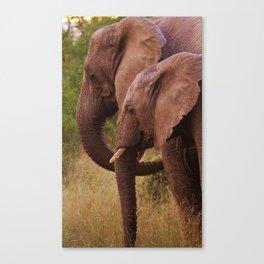 Mom and Baby Elephants Canvas Print