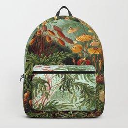 Ernst-haeckel-Kunstformen-der-Natur-viintage Backpack