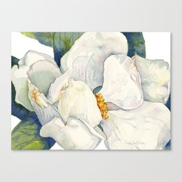 Magnolia Full Bloom Canvas Print