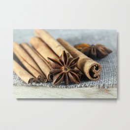 spices on flax Metal Print