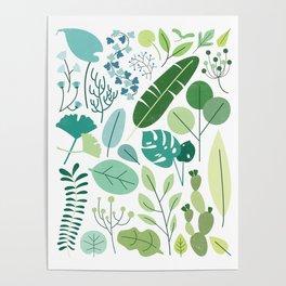 Botanical Chart Poster