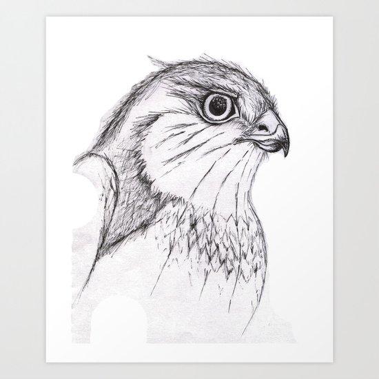 Aguila Art Print