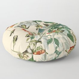 Vintage Hummingbird Illustration - Birds of America Floor Pillow