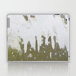 fish backbone Laptop & iPad Skin