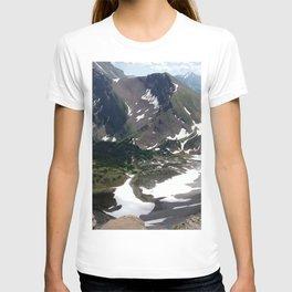 Buller Ridge T-shirt