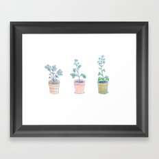 Radish. Framed Art Print